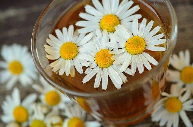 Les 8 meilleurs thés pour un mal de gorge (vraiment efficace)