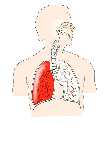 cannabis-santé pulmonaire