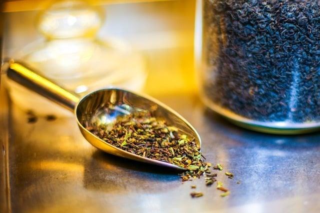 culture de thé vert