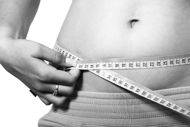 chardon marie-perte de poids