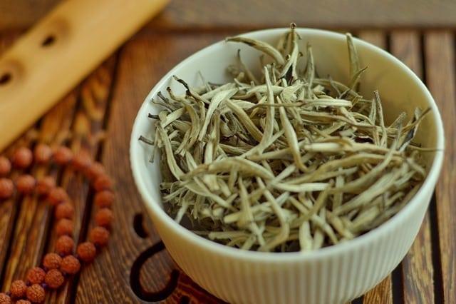 bienfaits de thé blanc pour la santé