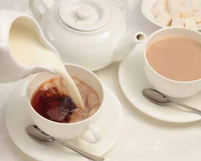 Qu'est-ce que le thé au lait ? Avantages, utilisations (et recettes)