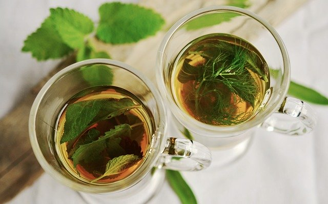 Thé - Antioxydant