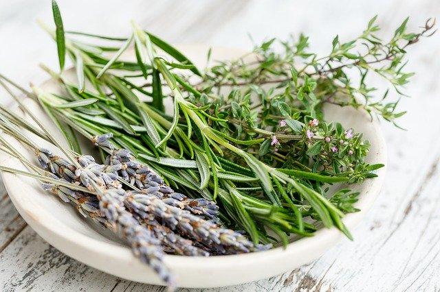 Herbes de Provence : tout ce dont vous avez besoin de savoir (en 2020)