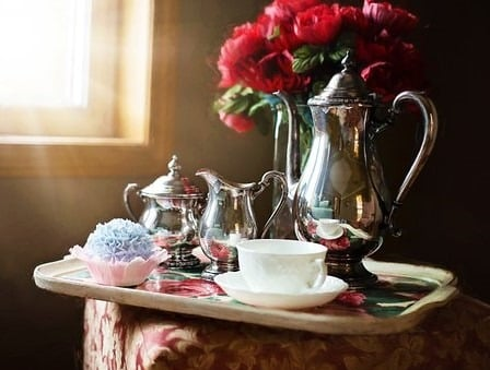 Pour le Soir : Thé Vert ou Thé Noir ? (et pour le matin et le midi ?)
