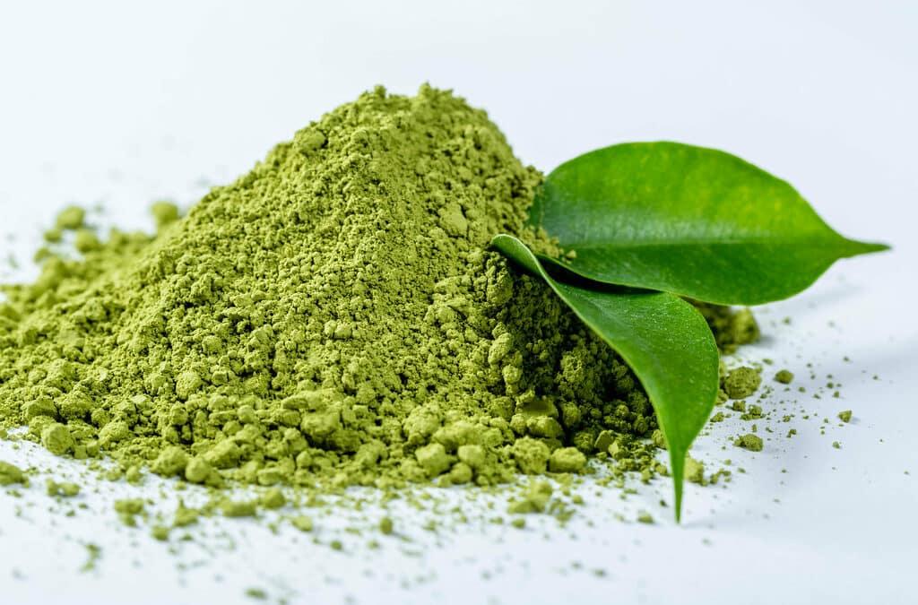 Quelles Calories dans le thé Matcha en Poudre ?