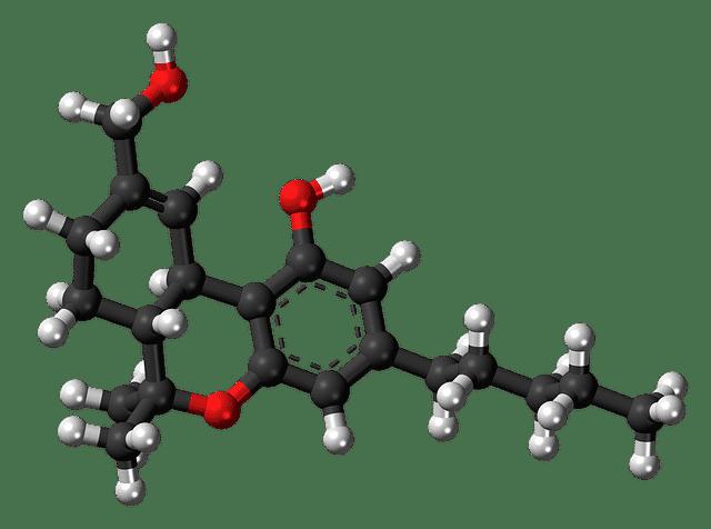 Qu'est-ce Que le THC? (et ses effets réels)
