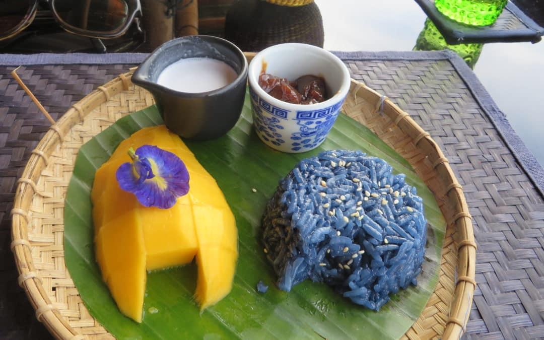 Fleur Clitoria Ternatea du Pois Bleu : Ses Bienfaits (longue liste)