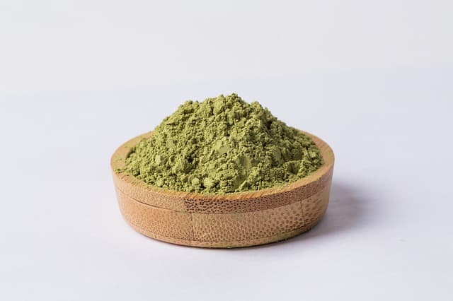 Thé Vert : Quel est le Meilleur Pour Ma Santé ? (prouvé par la science)